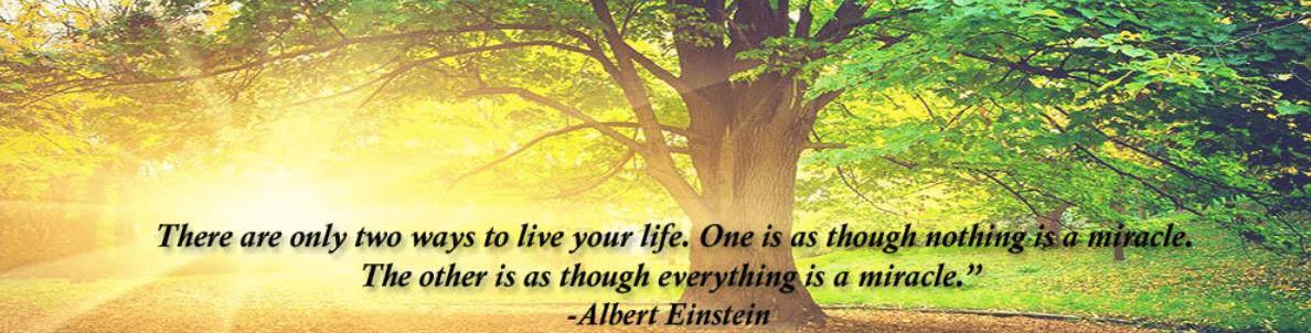 Albert Einstein Miracle- Leonard Wayne